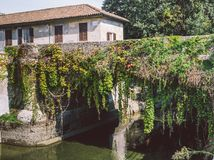 Bridge with vines in Naviglio Martesana, Lombardy, Italy Stock Photos