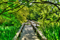 Bridge walkway. Vandusen Garden - framed in the trees Stock Images