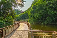 Bridge walkway on the waterfront, in the forest stock image