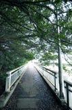The bridge where nobody is. The japanese bridge where nobody is Royalty Free Stock Photos