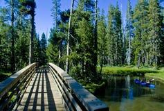 Bridge into the Wilderness stock photos