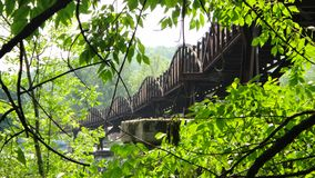 Bridge in the Wilderness in Pennsylvania Royalty Free Stock Image
