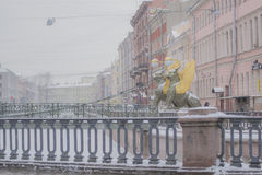 Bridge with winged lions. Winter in Russia, Saint Petersburg Stock Photo