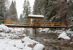 Bridge in winter forest Stock Image