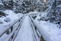 A bridge in a winter mountain forest. Tatra Mountains. A bridge in a winter mountain forest. Tatra Mountains Royalty Free Stock Photography