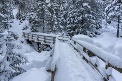 A bridge in a winter mountain forest. Tatra Mountains. A bridge in a winter mountain forest. Tatra Mountains Royalty Free Stock Image