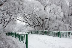 Bridge in winter park. A horizontal picture Royalty Free Stock Photo