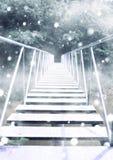 Bridge in winter Royalty Free Stock Image