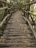 A bridge of wood in the forest above the river, look forward. Wooden bridge in autumn forest Royalty Free Stock Photo