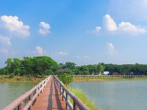 Bridge. Wooden Bridge Walkway in The Swamp Landscape Head to The Park with Blue Sky on Sunshine Day Stock Photo