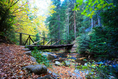 Bridge in wooden forest. Old  wooden bridge in colorful autumn forest with small river Stock Photo