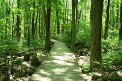 Bridge in woods Stock Photos
