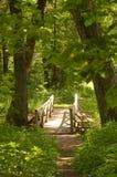 Bridge in woods Stock Photo