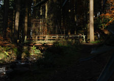 Bridge in the woods. Image of a bridge in a dark wood Stock Photography