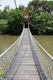 Bridge in the zoo. Royalty Free Stock Image