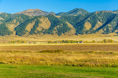 Bridger Mountain Fields Stock Image