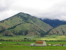 Bridgers and Farm. Summer green on the Bridger Mountains with green fields and a barn style farm house in forground royalty free stock photos