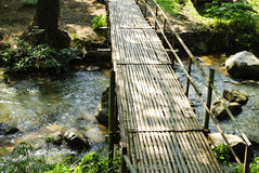 Bridges, bamboo, tropical rain forests Royalty Free Stock Photo