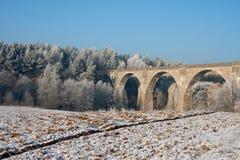 bridges den poland stanczykien Royaltyfri Fotografi