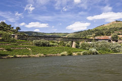 Bridges of the Douro River Stock Image