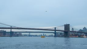 Bridges in New York City royalty free stock photo