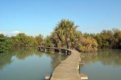 Bridges over the marsh Royalty Free Stock Image