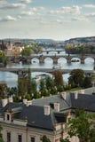bridges prague s Arkivbilder