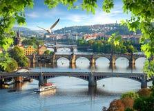 Bridges in a row royalty free stock photos