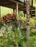 The bridges at Vidanta Riviera Maya Stock Images