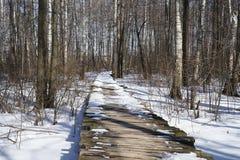 Bridges. Winter  landscape  new  england  forest  snow  bridges Stock Photo