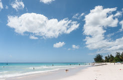 BRIDGETOWN, BARBADOS - 19 DE MARZO DE 2014: Playa de Bayshore en Barbados, Bridgetown Palmera y gente Foto de archivo
