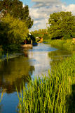 Bridgwater and Taunton Canal Somerset Royalty Free Stock Photos