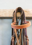 Bridle hanging. Stock Images