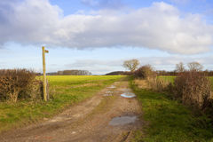 Bridleway in autumn. A country bridleway with a wooden sign post in a yorkshire wolds farming landscape with puddles hills and hedgerows under a blue cloudy sky Stock Images