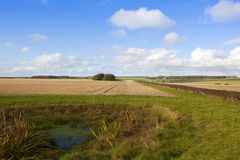 Bridleway and dew pond Stock Image