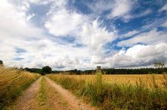 Bridleway durch Feld stockfoto