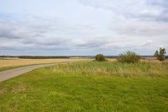 Bridleway e stagno dell'azienda agricola Fotografie Stock