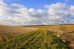 Bridleway ed agricoltura Fotografia Stock Libera da Diritti