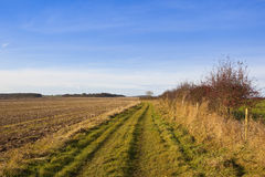 Bridleway with hawthorn Stock Photo