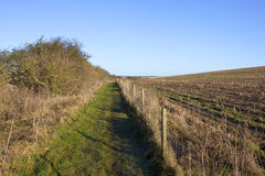 Bridleway and hedgerow Stock Photos