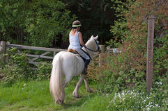 Bridleway Stock Photos