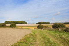 Bridleway in late summer Royalty Free Stock Photos