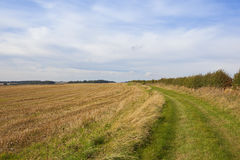 Bridleway in late summer Royalty Free Stock Image
