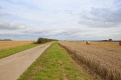 Bridleway and straw bales Stock Image