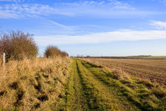 Bridleway in sunshine Stock Photography