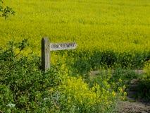 Bridleway tecken med en bakgrund av den oavkortade blomningen för rapsfrö royaltyfria bilder