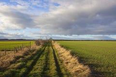 Bridleway Yorkshire wolds Arkivbild