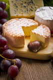 Brie Photographie stock