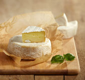 Brie and camembert cheese Stock Photography