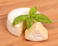Brie cheese with a basil Royalty Free Stock Images